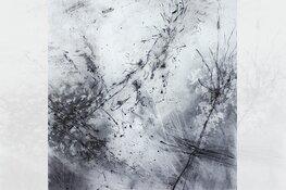 Papier, inkt en natuur door Marijke Pieters in Museum Heerenveen