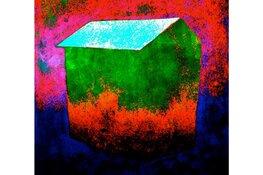 Tsead Bruinja tentoonstelling in de Pronkkaemer vrijdag 6 december